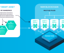NEM and XEM what's what?