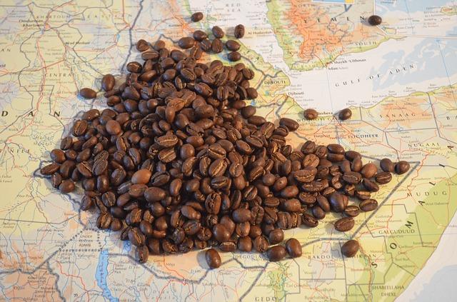 Cardano Ethiopia agritech blockchain